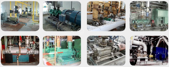 Tobee TDG Bolier Feed Water Pumps Applications