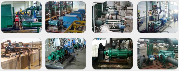 Tobee TD Multistage Sea Water Pumps On-site Applications