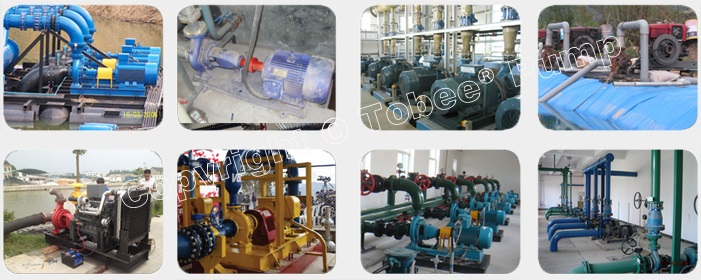 Tobee TS Irrigation Water Pump On-site Applications