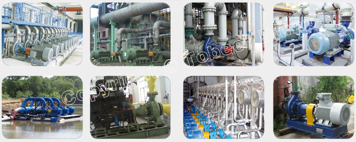 Tobee TA Petrochemical Process Pump On-site Applications