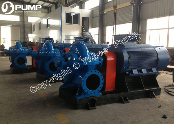 Double Suction Pumps