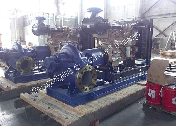 Diesel Engine Split Case Pumps
