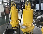 Hydroman Submersible Slurry Pumps with Dry Chamber in Latin America